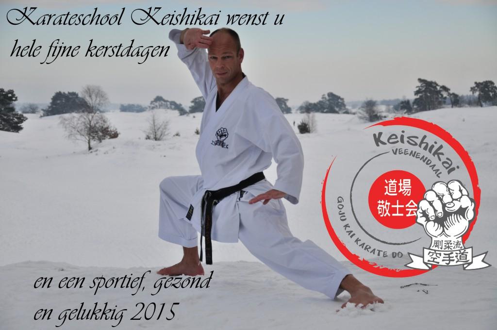 KeishikaiMerryXmassWish2014_NewYear2015