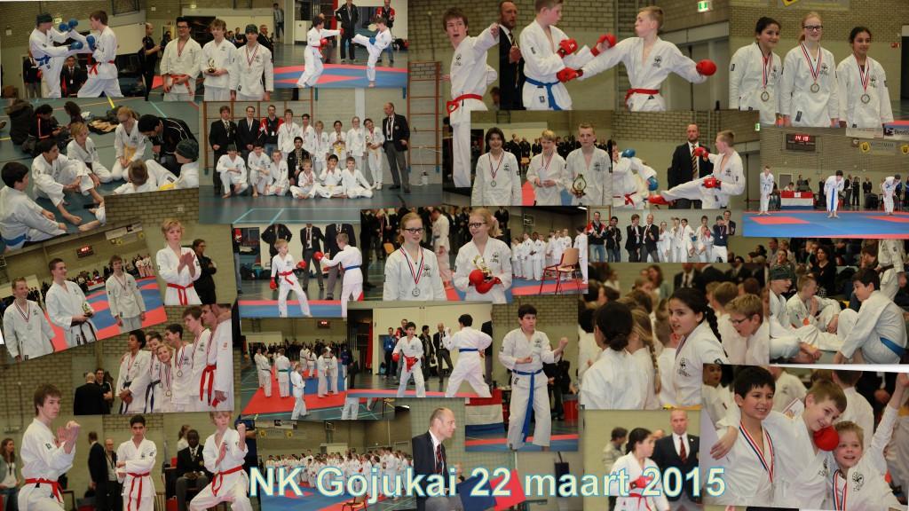 NK Gojukai 2015 toppers!