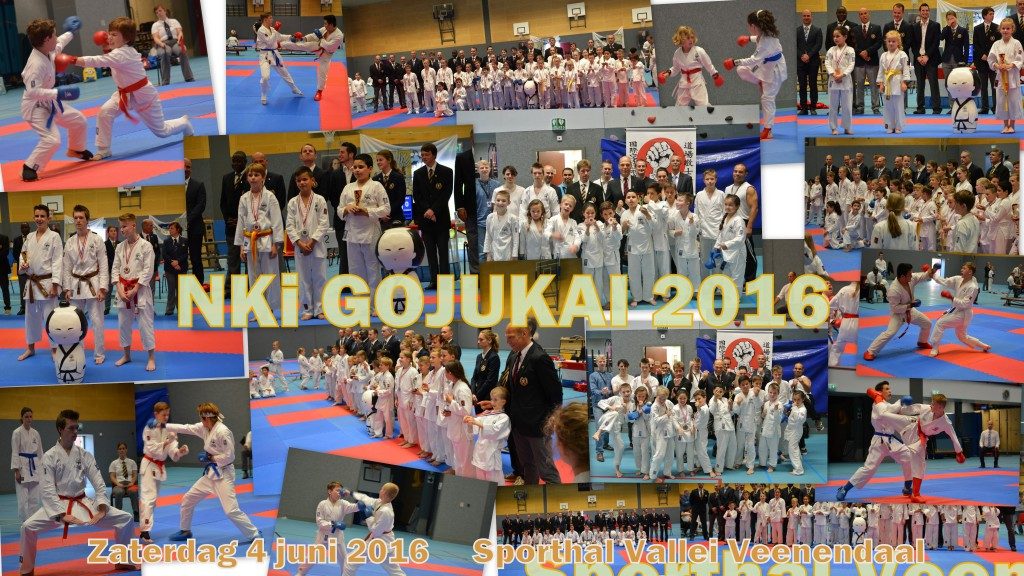 Nki GojuKai Karate 2016
