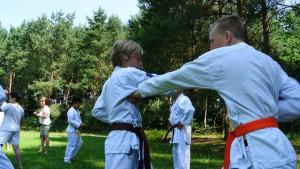 KeishikaiKarateDag2015_JuniorTraining_1
